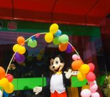 Disney Mascot Costumes