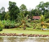 Lake Side Property for sale in Bolgoda - spectacular location