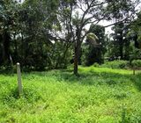 A Valuable 12 Perches Land for sale in Miriswatta, Gampaha.‎