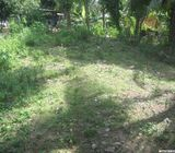 20 perches land for sale