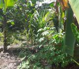 Kaduwela land
