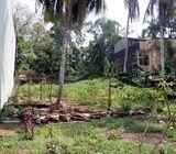 Valuable Land for Sale in Thalawathugoda.
