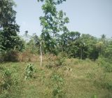 Land for sale - Govinna,Horana