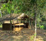 3 Blocks of Scenic Land for Sale at Ruwanwella.