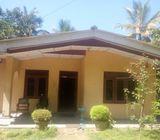 House sell in Balangoda
