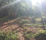 Land for sale at Mawathgama - Kurunegala