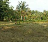 Land for Sale in Horana, Ballapitiya