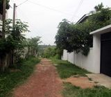 27.75 Perches Solid Land for Sale in Weligampitiya, Ja-Ela.