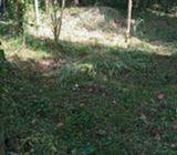 A Flat land From Daulagala Peradeniya