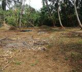 24.5 perches land in kesbewa (kesbewa-bandaragama road) for lease.