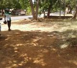 land with house for sale in Tissamaharama