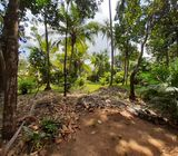 322 perches Land with House for sale