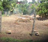 Pokuna Road,Paratha,Dolewatha Land for Sale