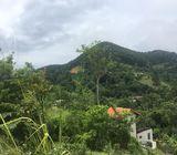 land for sale in Ella Tourism Area