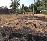 Land in negombo,daluwakotuwa