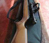 Gamo Hunter 440 Air Rifle for sale
