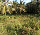 Water front land for sale near Bolgoda lake