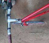 Japan racing bicycle