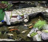 Pond filters for aquarium pond cleaning