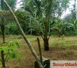 85 Perches Land for sale in Ruggahawila, Nittambuwa