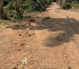 63 perches land for sale in Panadura, Malamulla