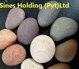 Sines Holding (Pvt) Ltd.