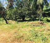Land sale for kurunegala