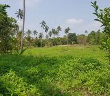 92 Perches Land for Sale in Weerambuwa, Kuliyapitiya.