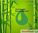 Bamboo Biomass Power Plant