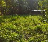 Valuable Land for sale in Alawwa
