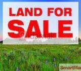Valuable land for sale in