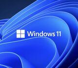 Windows 11 Damanu Labe...