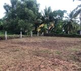 Land in Negombo