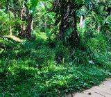 kegalle land for sale