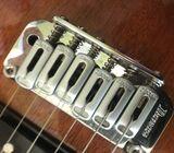 Electri guitar