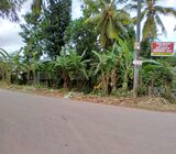 Land For Sale in Ganemulla .  Face to main road