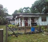 House in Ja Ela
