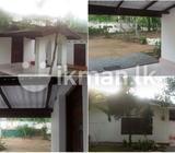 Hansagiri Road facing 4BD Complete house